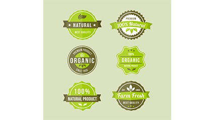 6 green organic food label vector material