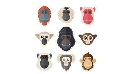 9 creative monkey and orangutan avatar vector material