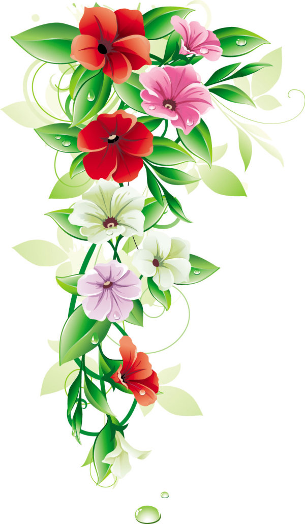 Beautiful flowers 01 - vector