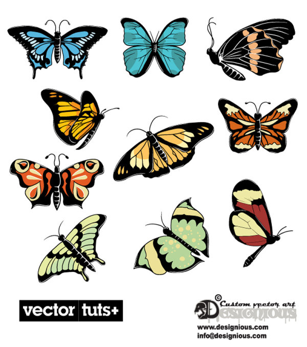 Beautiful butterflies - vector