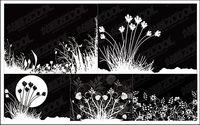 flowers and black-and-white vector