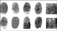 Fingerprint vector material -4