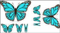 Beautiful butterfly material 03 - vector