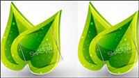Spring green leaves 01 - Vector