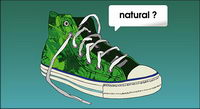 Vector canvas shoes
