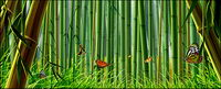 Bamboo and butterfly